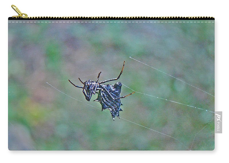 Spined Micrathena Carry-all Pouch featuring the photograph Spined Micrathena Orb Weaver Spider - Micrathena Gracilis by Mother Nature