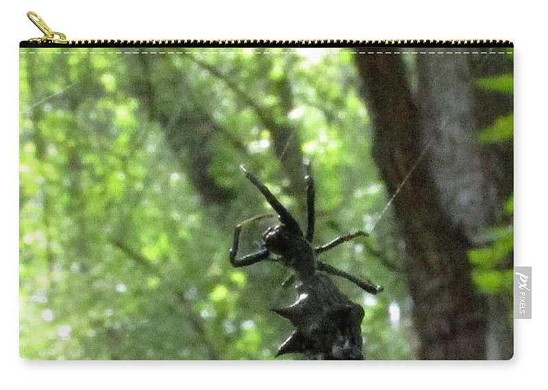 Spiny Orb Weaver Spiders Of North America Black Spiked Spider Black Spiny Spider Natural Biodiversity Natural Design In Nature Prints Animals Fauna Insects Bugs Carry-all Pouch featuring the photograph Spiny Orb Weaver by Joshua Bales