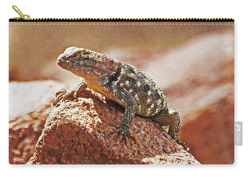 Spiny Swift Looks Over Its Domain Carry-all Pouch featuring the photograph Spiny Swift Looks Over Its Domain by Tom Janca