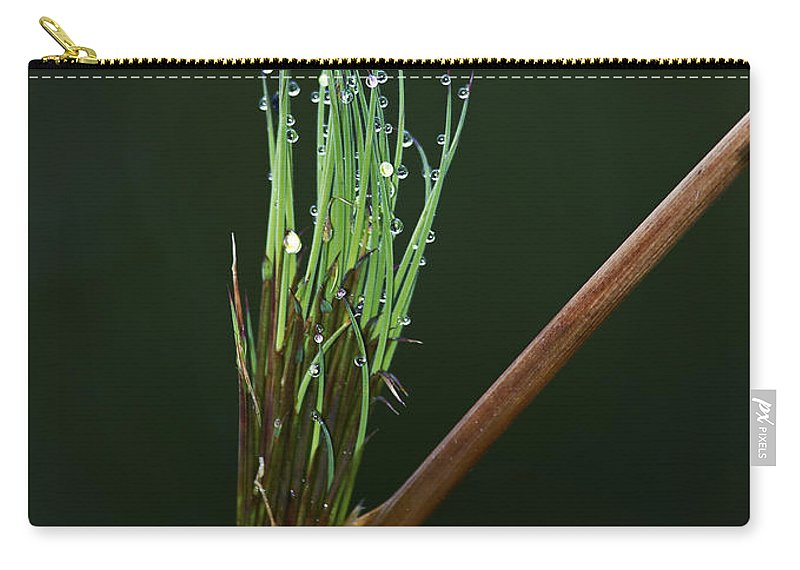 Festblues Carry-all Pouch featuring the photograph Spiritualism In Nature... by Nina Stavlund