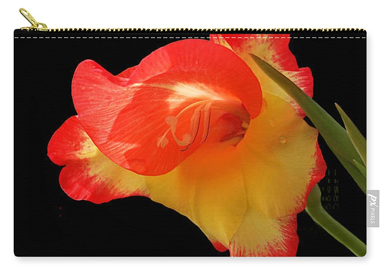 Red Flower Carry-all Pouch featuring the photograph Splash Of Sunshine by Gill Billington