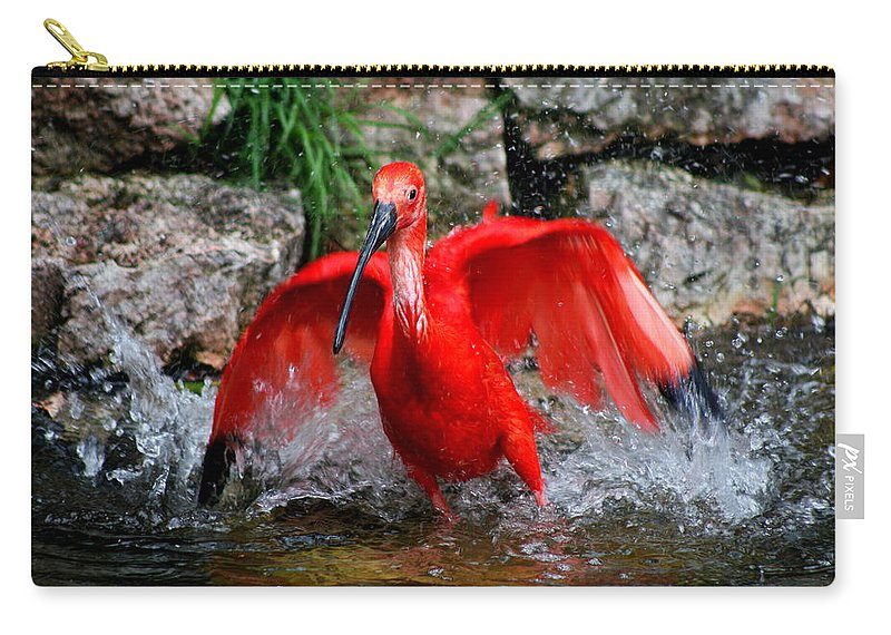 Red Ibis Carry-all Pouch featuring the photograph Splish Splash - Red Ibis by Christiane Schulze Art And Photography