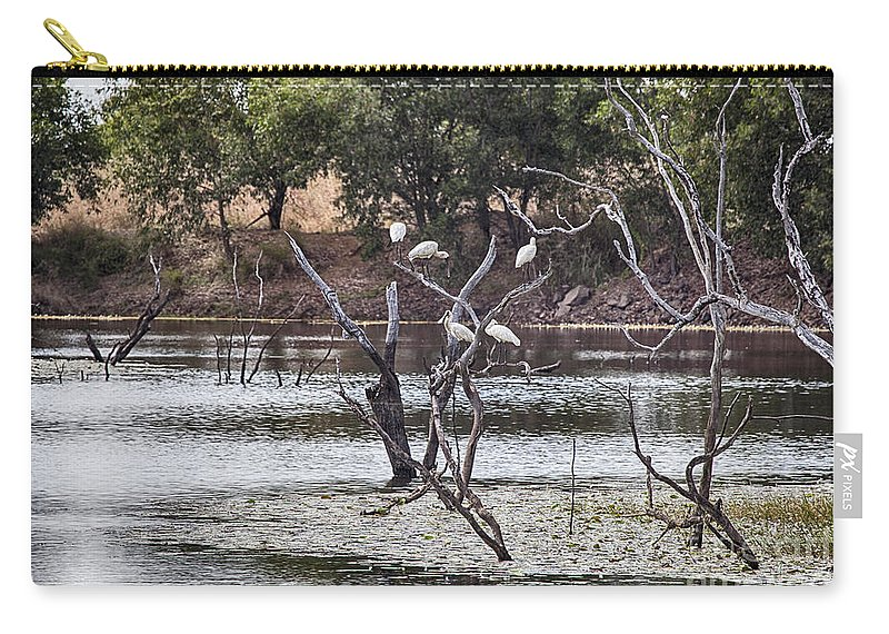 Billabong Carry-all Pouch featuring the photograph Spoonbill Gathering by Douglas Barnard