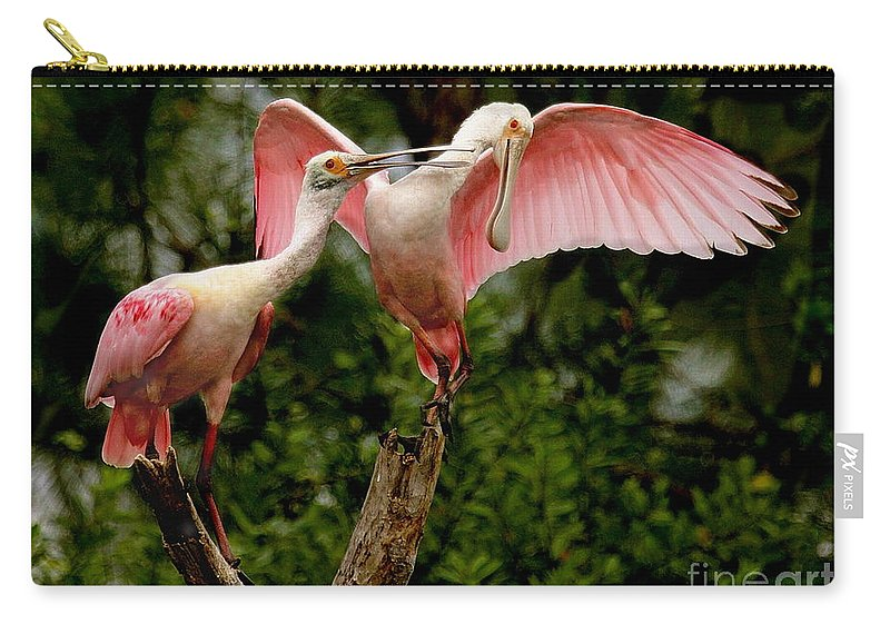 Birds Carry-all Pouch featuring the photograph Spoonies In The Treetop by Myrna Bradshaw