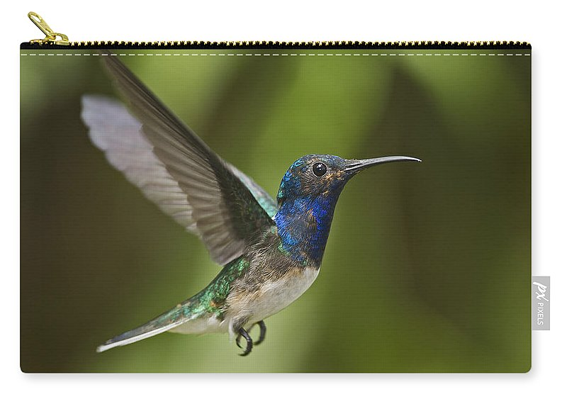 Festblues Carry-all Pouch featuring the photograph Spread Your Wings... by Nina Stavlund