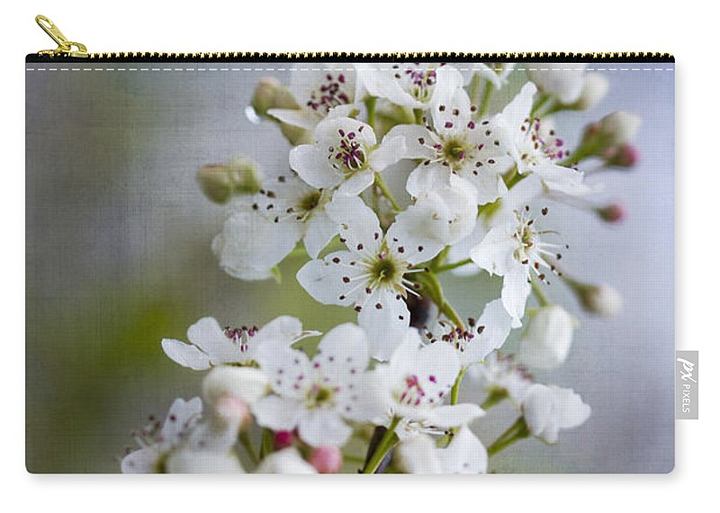 Bradford Carry-all Pouch featuring the photograph Spring Blooming Bradford Pear Blossoms by Kathy Clark