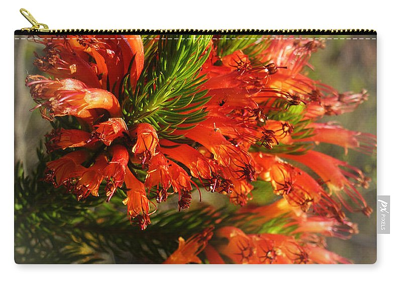 Erica Carry-all Pouch featuring the photograph Spring Blossom 11 by Xueling Zou
