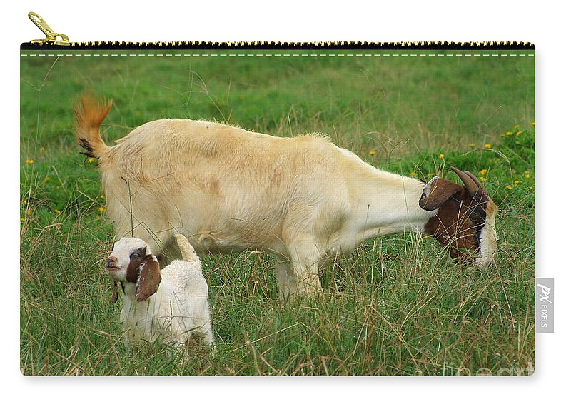 White Carry-all Pouch featuring the photograph Spring Born by Mary Deal