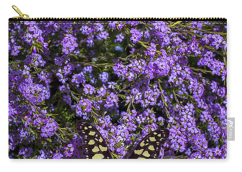 Yellow And Black Carry-all Pouch featuring the photograph Spring Butterfly by Garry Gay
