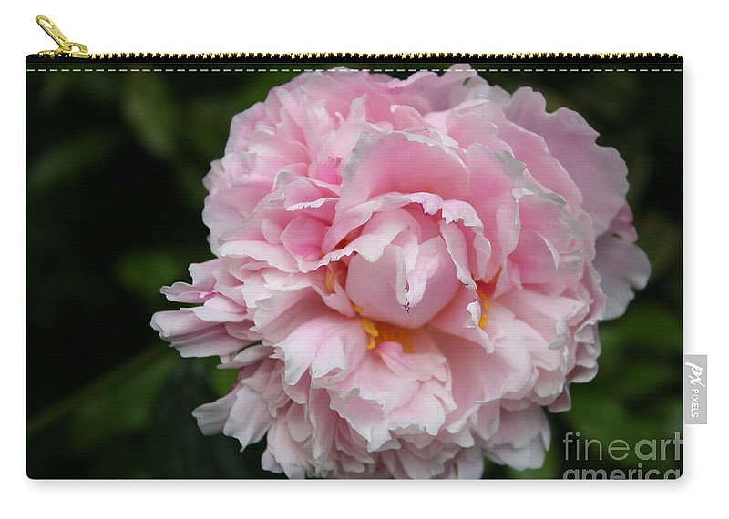 Peony Carry-all Pouch featuring the photograph Spring In Pink by Christiane Schulze Art And Photography