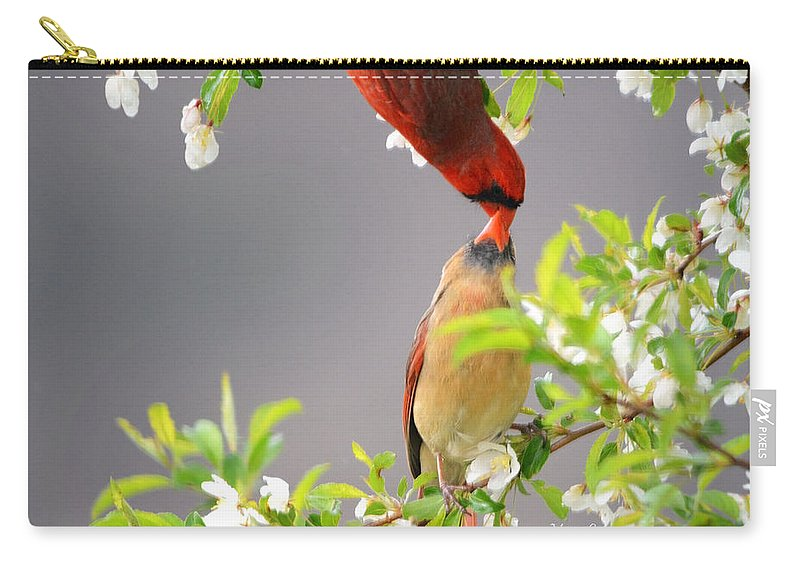 Nature Carry-all Pouch featuring the photograph Cardinal Spring Love by Nava Thompson