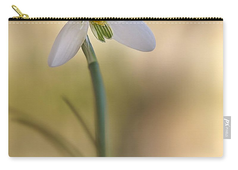 Flower Carry-all Pouch featuring the photograph Spring Messenger by Annie Snel