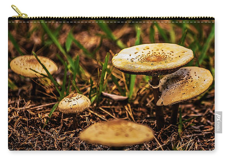 Florida Carry-all Pouch featuring the photograph Spring Mushrooms by Mark Fuge