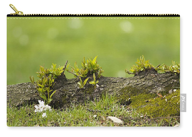Spring Carry-all Pouch featuring the photograph Spring Time by Jatinkumar Thakkar