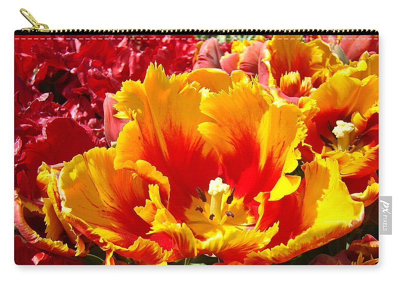 Yellow Carry-all Pouch featuring the photograph Spring Tulip Flowers Art Prints Yellow Red Tulip by Baslee Troutman