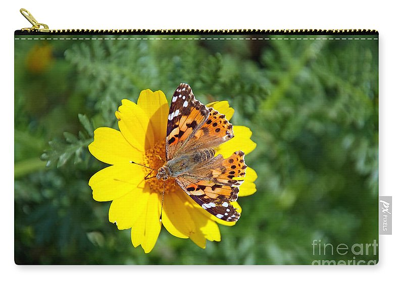 Hydra; Idra; Greece; Hellas; Greek; Hellenic; Argosaronic; Saronic; Gulf; Butterfly; Insect; Daisy; Daisies; Crown Daisy; Yellow Carry-all Pouch featuring the photograph Springtime In Hydra Island by George Atsametakis
