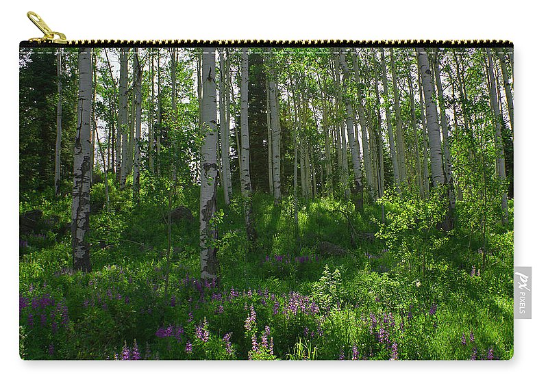 Aspens Carry-all Pouch featuring the photograph Springtime On The Grand Mesa by Ernie Echols