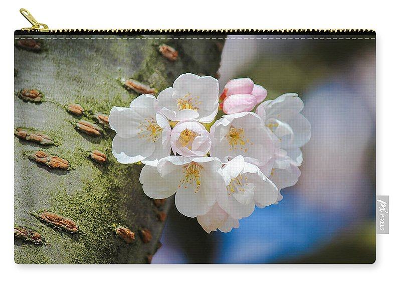 Cherry Blossoms Carry-all Pouch featuring the photograph Sprouting Cherry Blossoms by Patricia Babbitt