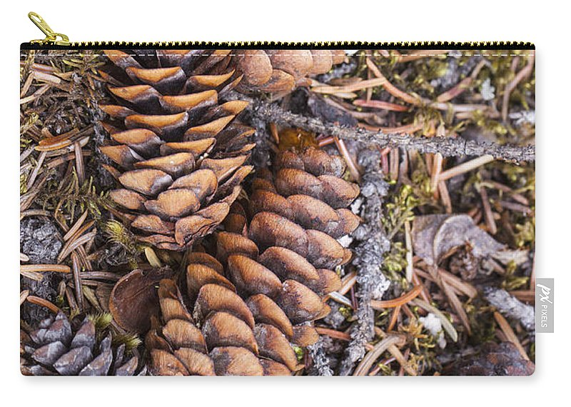 Doug Lloyd Carry-all Pouch featuring the photograph Spruce Cones by Doug Lloyd