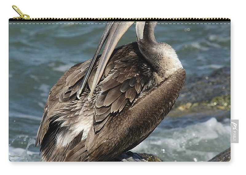 Pelican Carry-all Pouch featuring the photograph Sprucing Pelican by Christiane Schulze Art And Photography