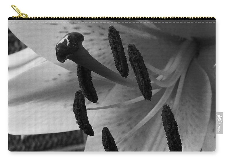 Lily Carry-all Pouch featuring the photograph Sq Lily Morning Bw by Dale Crum