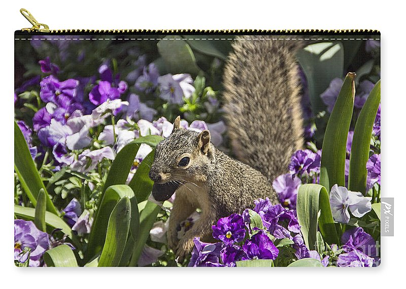 Squirrel Carry-all Pouch featuring the photograph Squirrel In The Botanic Garden-dallas Arboretum V2 by Douglas Barnard