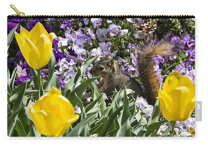 Squirrel Carry-all Pouch featuring the photograph Squirrel In The Botanic Garden-dallas Arboretum V3 by Douglas Barnard