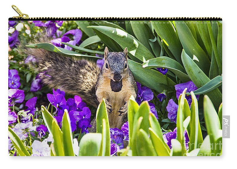 Squirrel Carry-all Pouch featuring the photograph Squirrel In The Botanic Garden by Douglas Barnard