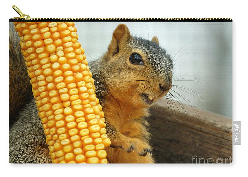 Squirrel Carry-all Pouch featuring the photograph Squirrel by Lori Tordsen
