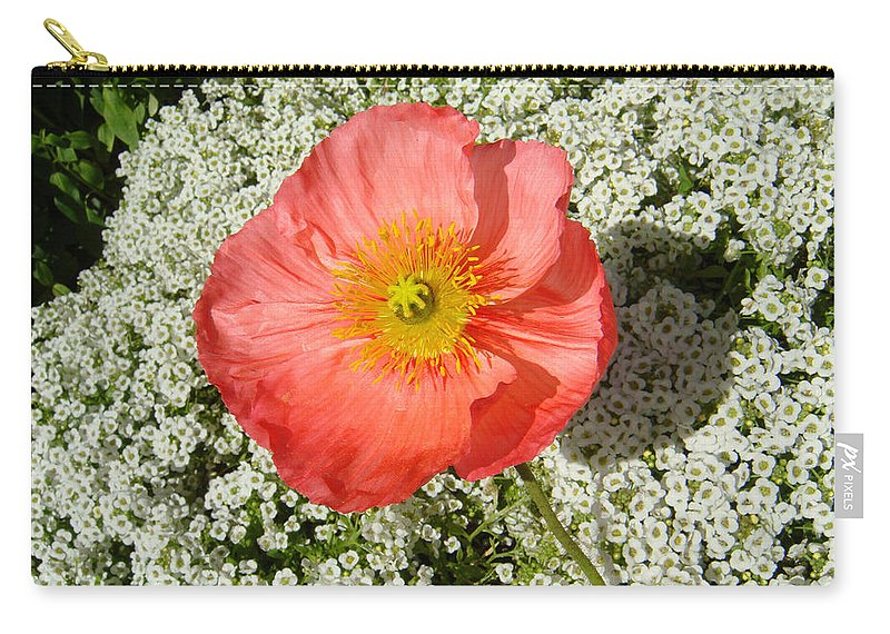 Poppy Carry-all Pouch featuring the photograph Stand And Be Noticed by Donna Blackhall