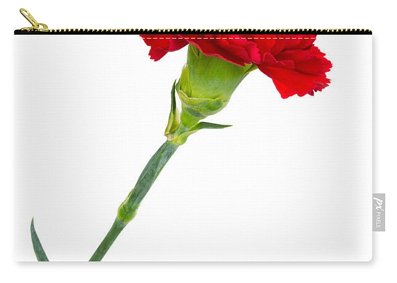 Bloom Carry-all Pouch featuring the photograph Standing Carnation by David Head