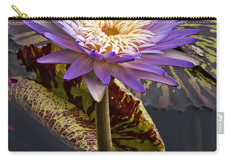 Petals Carry-all Pouch featuring the photograph Standing Out by Linda D Lester
