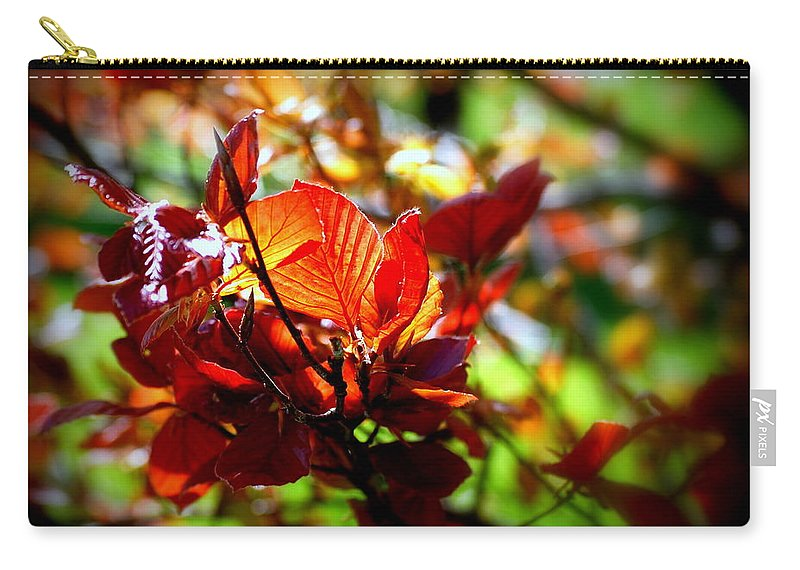 Leaf Carry-all Pouch featuring the photograph Standing Out by Scott Polley