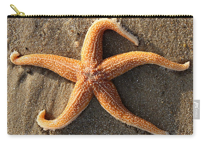 Star Fish Carry-all Pouch featuring the photograph Star by David Nicholls