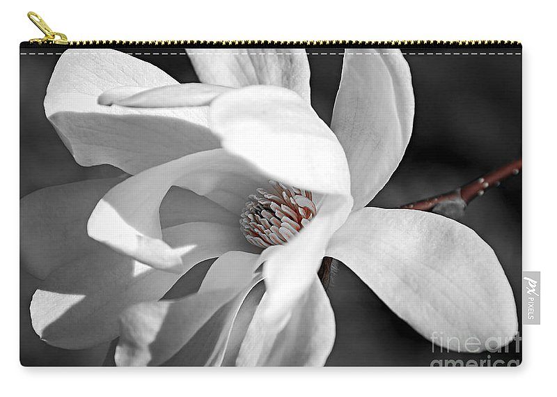 Magnolia Carry-all Pouch featuring the photograph Star Magnolia Flower by Elena Elisseeva