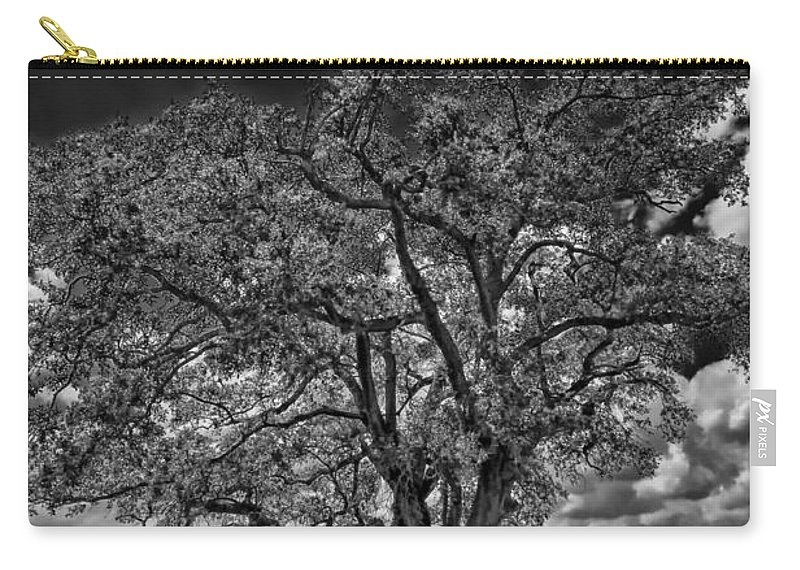 New Orleans Carry-all Pouch featuring the photograph Stardom Bw by Steve Harrington