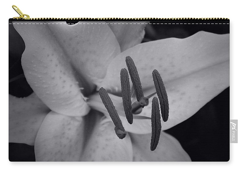 Aloha Carry-all Pouch featuring the photograph Stargazer by Sharon Mau