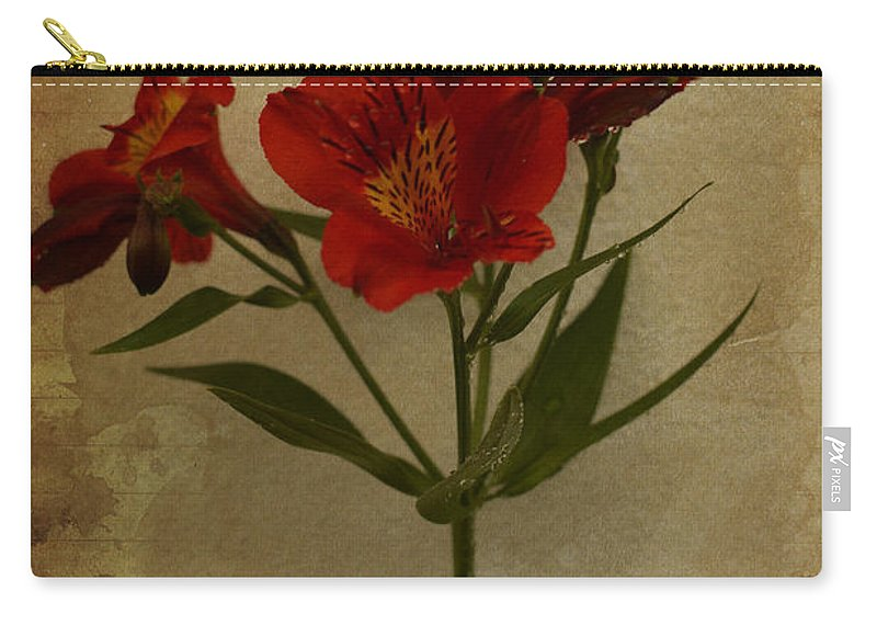 Stargazer On Paper Carry-all Pouch featuring the photograph Stargazers On Paper by Marco Oliveira