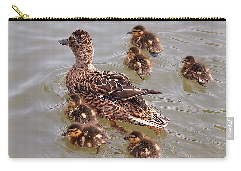 Ducklings Carry-all Pouch featuring the photograph Stay Close To Me by Gill Billington