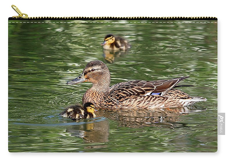Ducklings Carry-all Pouch featuring the photograph Staying Close To Mom by Gill Billington