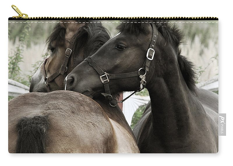 Valentines Carry-all Pouch featuring the photograph Staying Together by Angel Tarantella