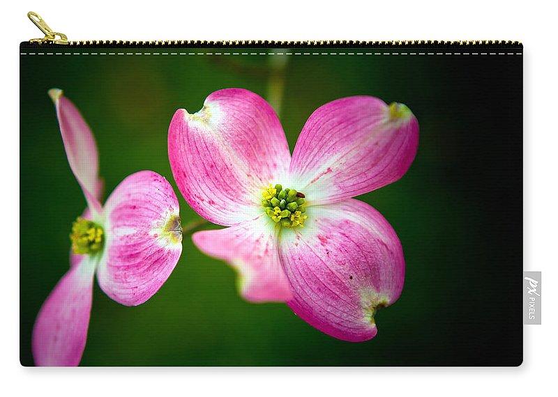 Cornus Florida Carry-all Pouch featuring the photograph Steller by Sennie Pierson