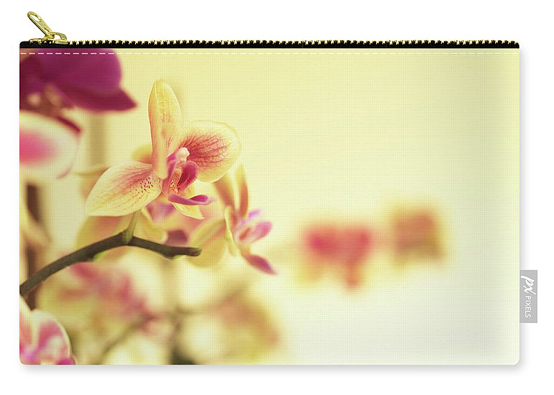 Purple Carry-all Pouch featuring the photograph Stem Of Orchids by Jlph
