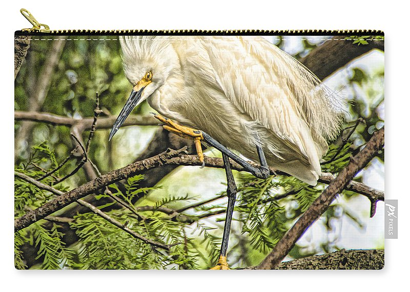 Snowy Egret Carry-all Pouch featuring the photograph Stepping Out by James Ekstrom