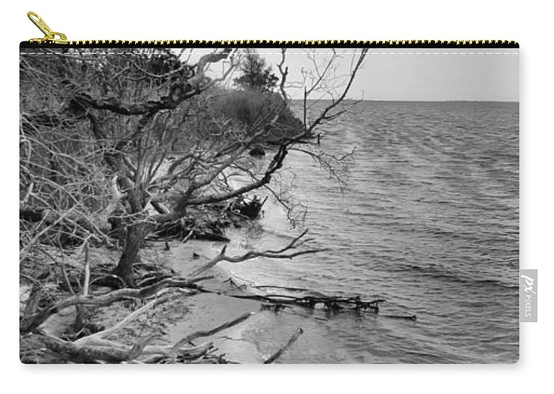 Nature Carry-all Pouch featuring the photograph Steps To Nowhere by Art Dingo