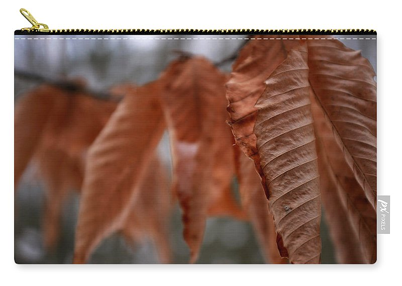 Winter Carry-all Pouch featuring the photograph Sticking It Out by Allan Lovell