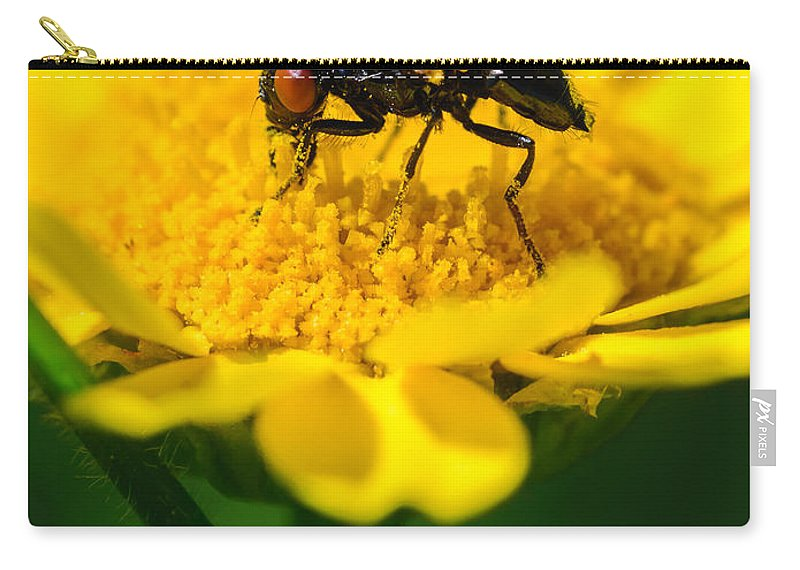 Daisy Carry-all Pouch featuring the photograph Sticky Fingers by Marco Oliveira