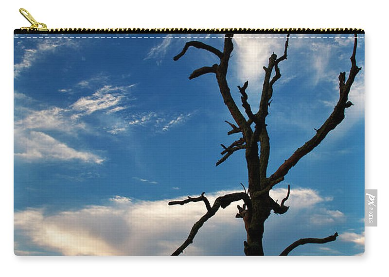Blue Ridge Carry-all Pouch featuring the photograph Still Beautiful by Guy Shultz