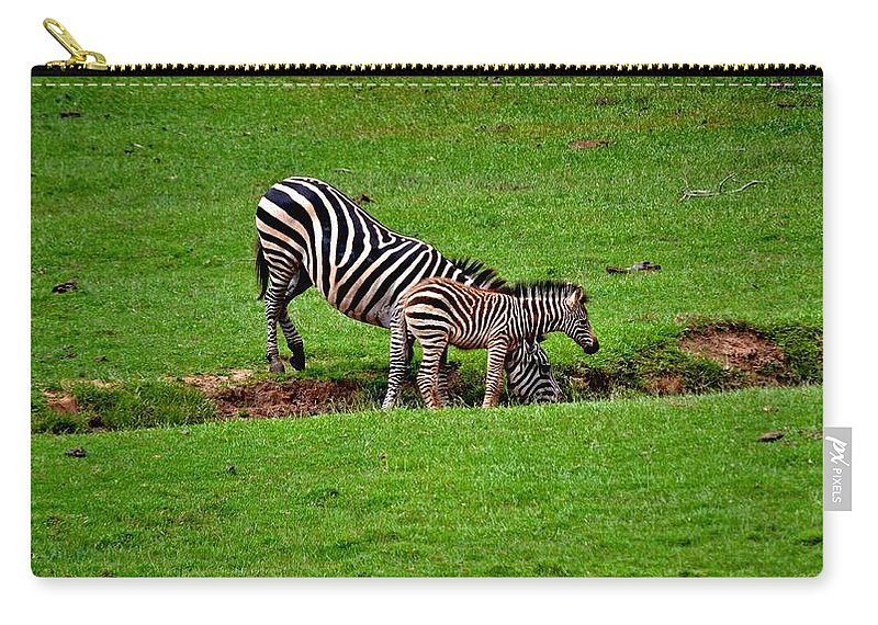 Zebras Carry-all Pouch featuring the photograph Stopping For A Drink by Tara Potts
