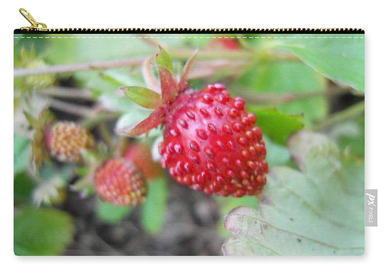 Flowers Carry-all Pouch featuring the photograph Strawberry by Coleen Harty